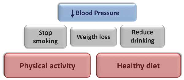 Physical Activity: The Best Prescription for Hypertension