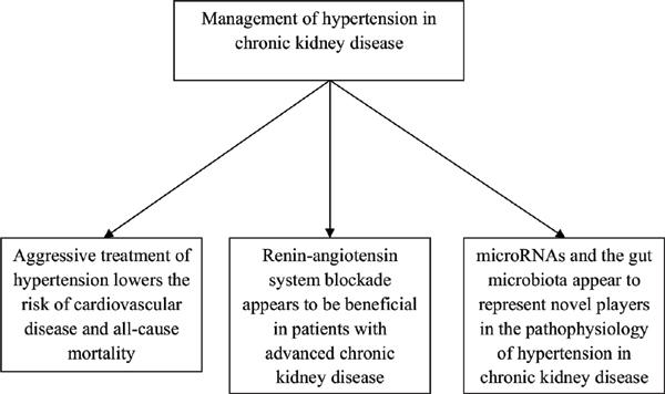 Hypertension In Chronic Kidney Disease Novel Insights Bentham Science