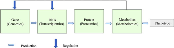Volatile Metabolomics with Focus on Fungal and Plant Applications - A Review