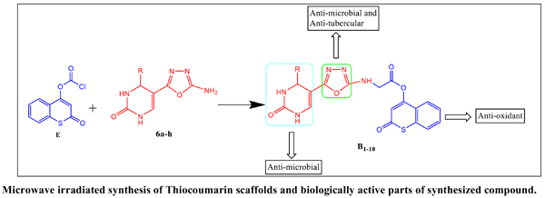 Synthesis and Pharmacological Activities of Oxadiazole and Pyrimidine Bearing Thiocoumarin Derivatives