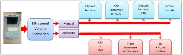 Article review of thyroid gland