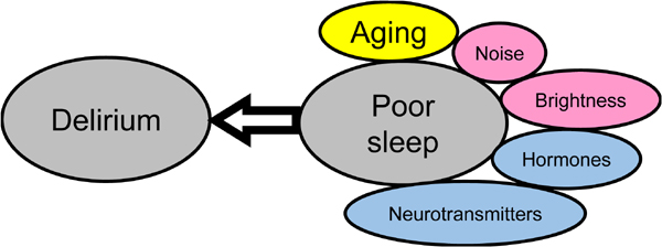 Elimination of the Causes of Poor Sleep Underlying Delirium is a Basic Strategy to Prevent Delirium