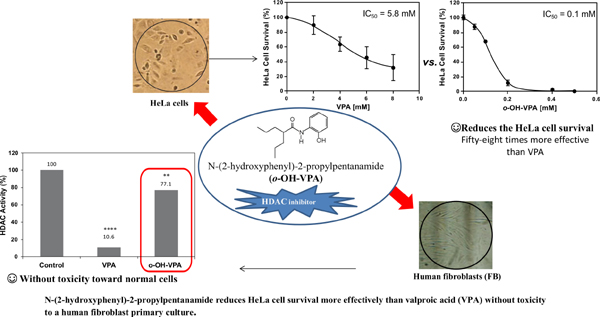 Epigenetic Evaluation of N-(2-hydroxyphenyl)-2-Propylpentanamide, a Valproic Acid Aryl Derivative with Activity Against HeLa Cells