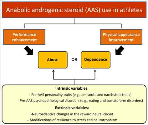anabolic steroid use by athletes essay While the total impact of anabolic steroid abuse is not known sometimes, athletes who use anabolic steroids may share the needles.