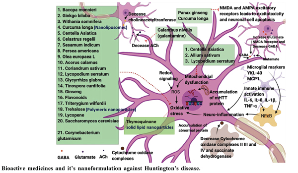 Expanding the Arsenal Against Huntington's Disease-Herbal Drugs and Their Nanoformulations