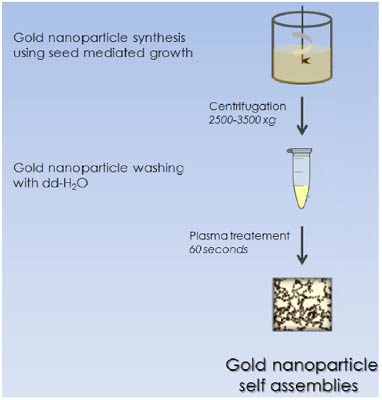 morphology control in gold nanoparticle synthesis Nanoparticle synthesis & applications: posters 4:00  for gold nanoparticles synthesis size and morphology control  the rapid and continuous-flow synthesis of .