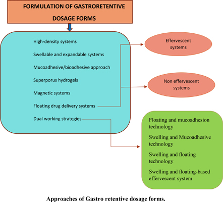 New Insights into Gastroretentive Dosage Forms in Delivery of Drugs