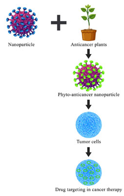 Current Trends In Phyto Cancer Therapy Using Nanoparticles Bentham Science