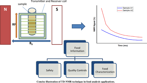 The Use of Time Domain NMR in Food Analysis: A Review