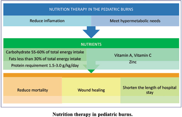 Nutrition Therapy in Pediatric Burns
