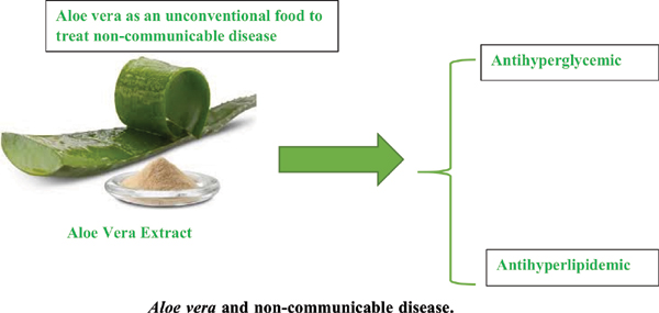 <i>Aloe vera</i>: An Unconventional Food Used to Reduce Hyperglycemia and Hyperlipidemia: Evidence from Pre-clinical and Clinical Studies