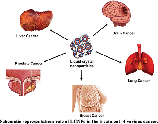 Multifunctional Liquid Crystal Nanoparticles for Cancer Therapy