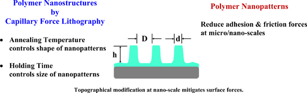 Polymeric Nanostructures for Prospective Tribological Application in Miniaturized Devices: A Review