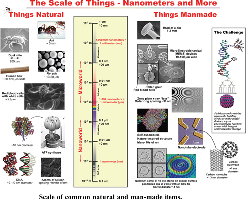 Processing, Characteristics and Applications of Bulk Nanostructured Metals and Alloys