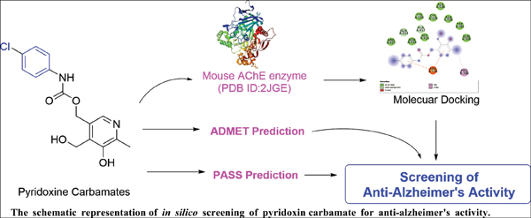 <i>In silico</i> Screening of Pyridoxine Carbamates for Anti-Alzheimer's Activities