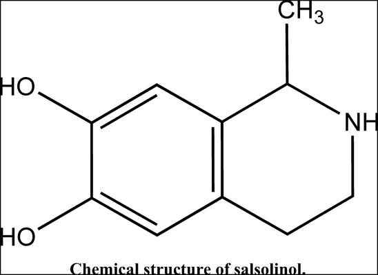 The Mechanism of Action of Salsolinol in Brain: Implications in Parkinson's Disease
