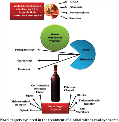 Novel Targets Explored in the Treatment of Alcohol Withdrawal Syndrome