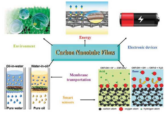 carbon nanotubes thesis A carbon nanotube field-effect transistor (cntfet) refers to a field-effect transistor that utilizes a single carbon nanotube or an array of carbon nanotubes as the channel material instead of bulk.