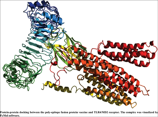 Computer-Aided Design of a Novel Poly-Epitope Protein in Fusion with an Adjuvant as a Vaccine Candidate Against Leptospirosis