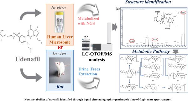 New Metabolites of Udenafil Identified through Liquid Chromatography– Quadrupole Time-of-flight Mass Spectrometry