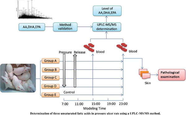 Determination of three Unsaturated Fatty Acids in Pressure Ulcer Rats Using A UPLC-MS/MS Method