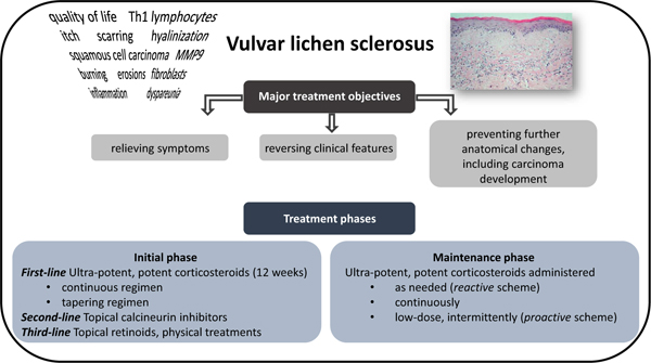 Vulva lichen sclerosus Will this