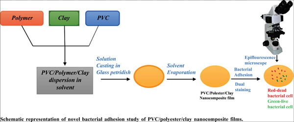 Surface Bacterial Adhesion Study of Novel Ternary PVC/ Polyester/ Bentonite Clay Nanocomposite Films