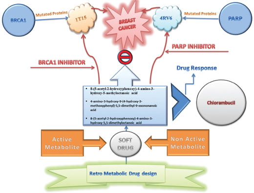 Retrometabolic Approach for Designing Personalized Anti- Cancer Drug