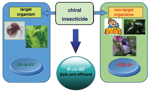 Development of Environment-Friendly Insecticides Based on