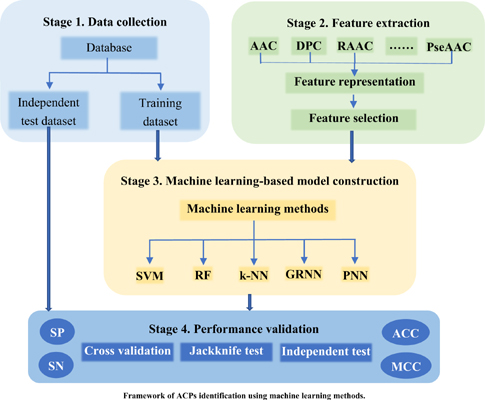 Comprehensive Review and Comparison of Anticancer Peptides Identification Models