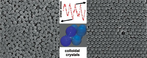 Large-Scale Self-Assembly in Weakly-Flocculated Suspensions