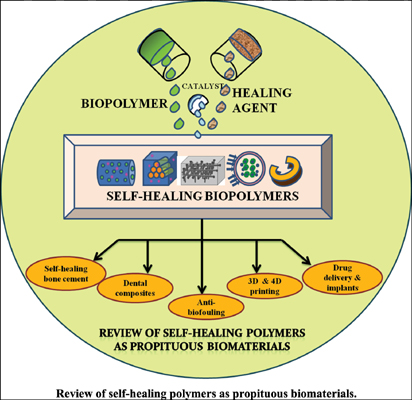 Review of Self-Healing Polymers as Propituous Biomaterials
