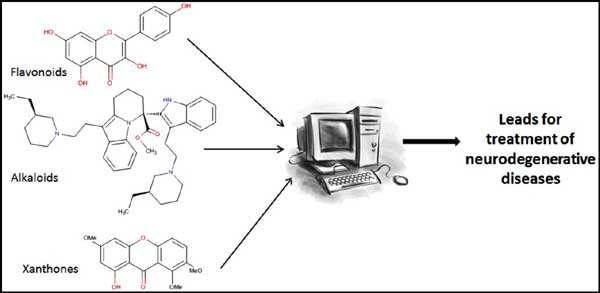 computer aided drug design studies in the discovery of secondary metabolites targeted against