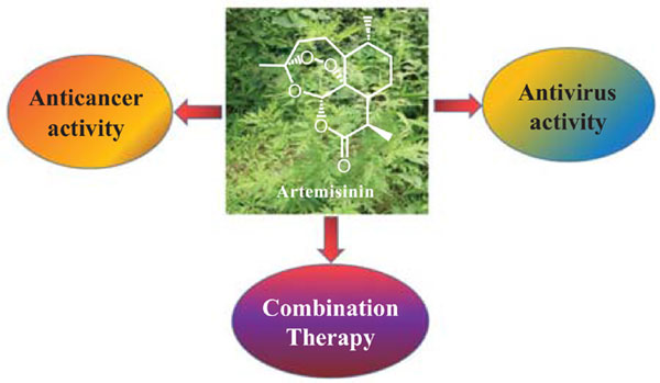 Biological Activities Of Artemisinin Derivatives Beyond Malaria Bentham Science
