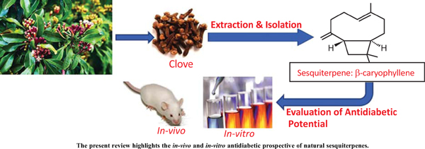 Antidiabetic Potential of Naturally Occurring Sesquiterpenes: A Review