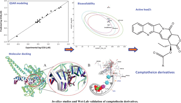 <i>In-silico</i> Studies and Wet-Lab Validation of Camptothecin Derivatives for Anti-Cancer Activity Against Liver (HepG2) and Lung (A549) Cancer Cell Lines