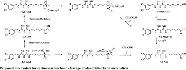 Carbon-carbon Bond Cleavage Catalyzed by Human Cytochrome P450 Enzymes: α-ketol as the Key Intermediate Metabolite in Sequential Metabolism of Olanexidine