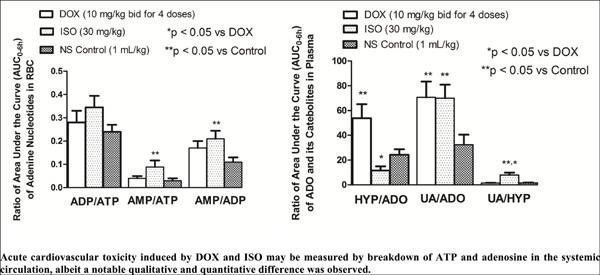 Hemodynamic Assessment and In vivo Catabolism of Adenosine 5'-triphosphate in Doxorubicin or Isoproterenol-induced Cardiovascular Toxicity