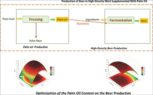 Evaluation of Nutritional Supplementation with Palm Oil in