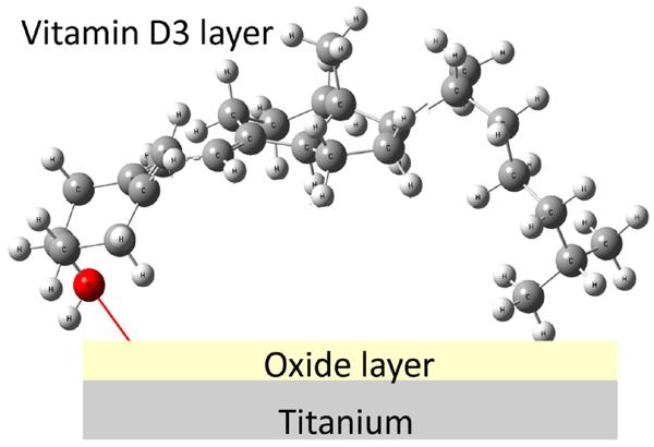 Influence of Biocompatible Coating on Titanium Surface Characteristics