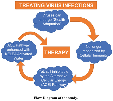 Enhancing the Alternative Cellular Energy (ACE) Pathway with KELEA Activated Water as Therapy for Infectious Diseases
