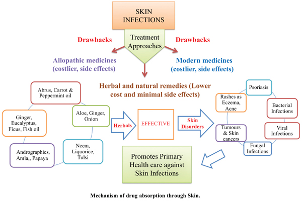 Miracles of Herbal Phytomedicines in Treatment of Skin Disorders: Natural Healthcare Perspective