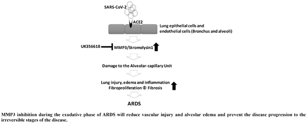Pharmacological Inhibition of MMP3 as a Potential Therapeutic Option for COVID-19 Associated Acute Respiratory Distress Syndrome