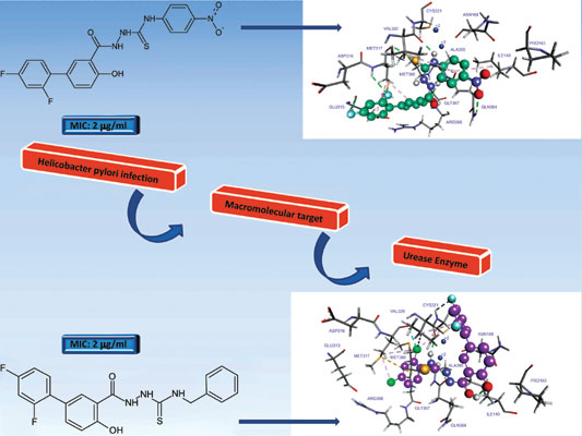Synthesis Molecular Modelling And Antibacterial Activity