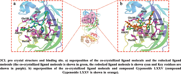 Virtual Screening of Chinese Medicine Small Molecule Compounds Targeting SARS-CoV-2 3CL Protease (3CL pro)