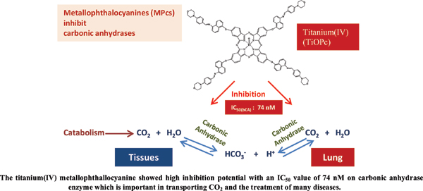Carbonic Anhydrase Inhibition Potential and Some Bioactivities of the Peripherally Tetrasubstituted Cobalt(II), Titanium(IV), Manganese(III) Phthalocyanines