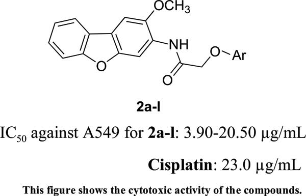 Novel N-(2-Methoxydibenzofuran-3-yl)-2-aryloxyacetamide Derivatives: Synthesis and Biological Investigation