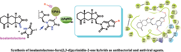 Modifications of Isoalantolactone Leading to Effective Anti-bacterial and Anti-viral Compounds