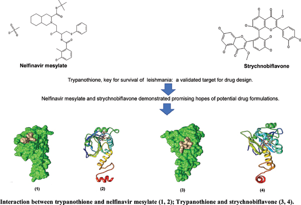 A Computational Molecular Docking Studies on the Tryparedoxin Peroxidase of <i>Leishmania donovani</i> Responsible for Visceral Leishmaniasis in Human