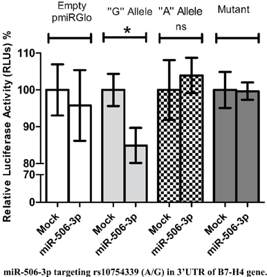 miRNA-506-3p Directly Regulates rs10754339 (A/G) in the Immune Checkpoint Protein B7-H4 in Breast Cancer